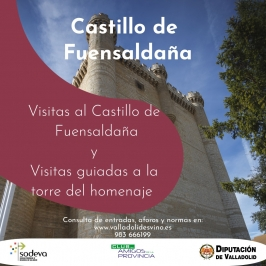 Visitas al Castillo de Fuensaldaña y Visitas guiadas a la Torre del Homenaje.