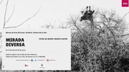 "Exposición temporal: ""Mirada diversa"" de la fotógrafa María Arnaiz"