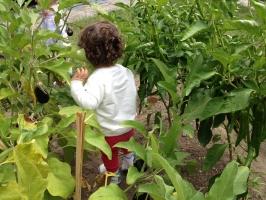 Mi Huerto Centro Infantil (0 a 3 años)