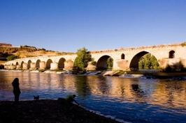 Ruta del Vino de Toro - Puente de Piedra