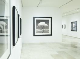 """Chema Madoz """"La naturaleza de las cosas y su eco en la colección"""""""