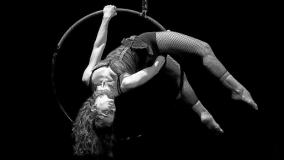 "Nuevo Fielato ""Gala de circo"""