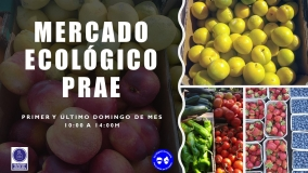 """""""Mercado ecológico"""" en el PRAE"""